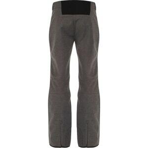 Dámské lyžařské kalhoty DWL301 Remark - Dare2B šedá 44/2XL